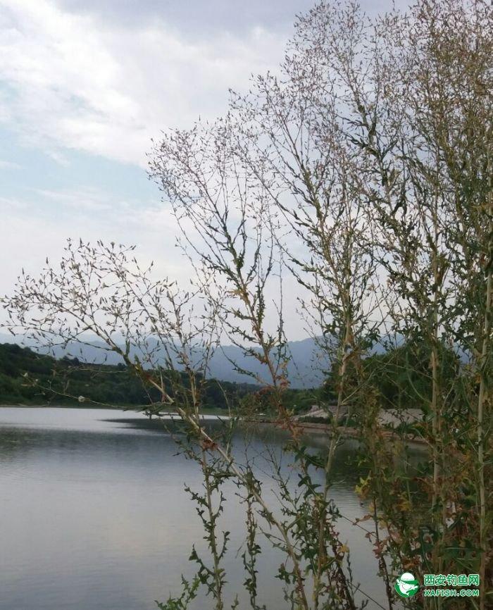 勘察地形,西北角水深3——5米,居无藏身水域。