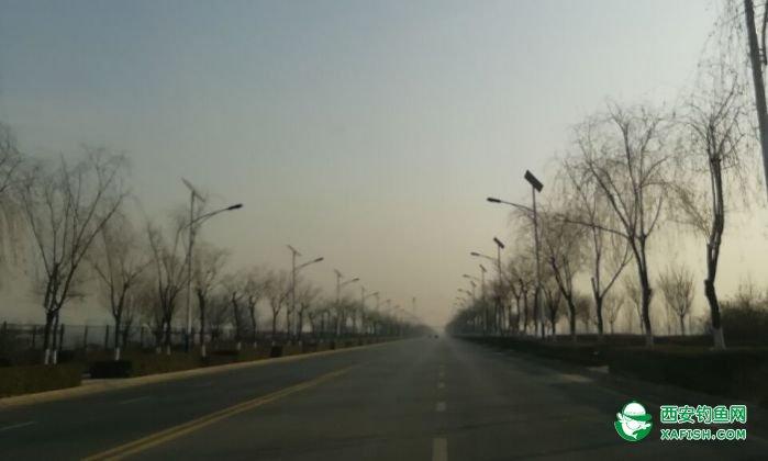 沿渭河河提路向周至县哑北镇方向行进。