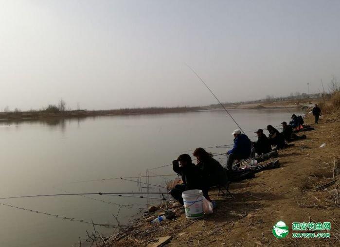 渭河边上真热闹